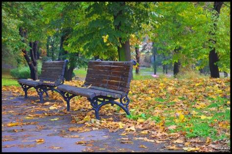 Image result for pozna jesen u mojoj ulici