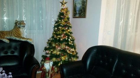 novogodisnja-jelka-1
